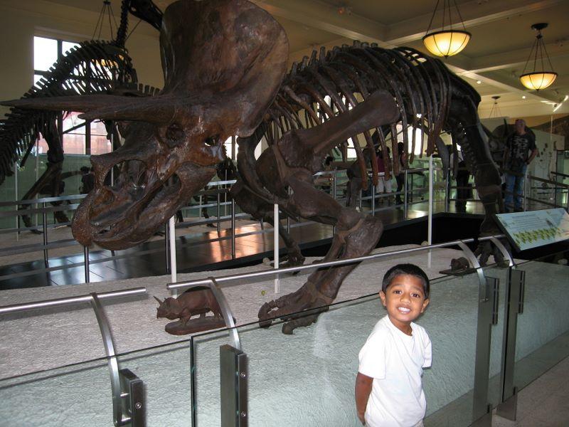 At the dinosaur exhibits
